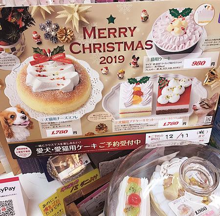 クリスマスケーキ_e0362456_15492347.jpg
