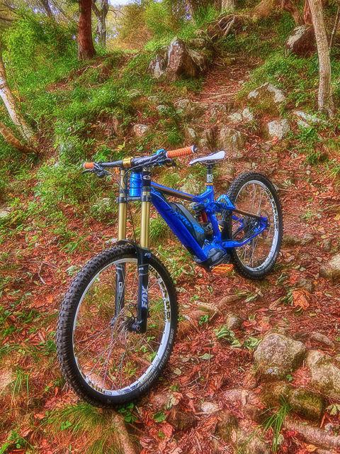 We ride everyday ! VIII_b0049658_08213593.jpg