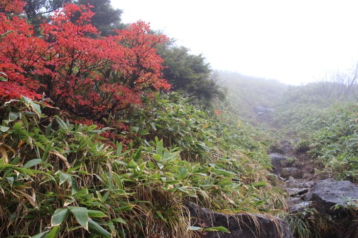10月14日  黒姫山_f0223068_13441287.jpg