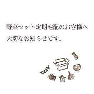 台風19号の影響による今後の野菜セット発送につきまして(2019/10/15)_c0110869_11394355.jpg