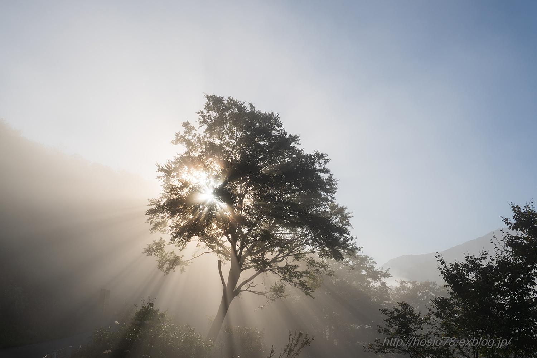 Morning glow_e0214470_16361621.jpg