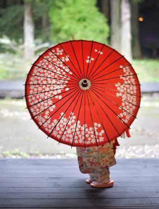 鳥取市周辺は塩害による停電はあったものの雨風とも..........._b0194185_19210754.jpg