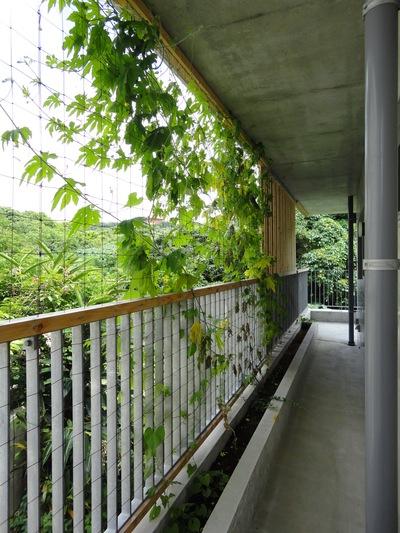 沖縄・豊見城の住宅  photo_a0122098_1447671.jpg