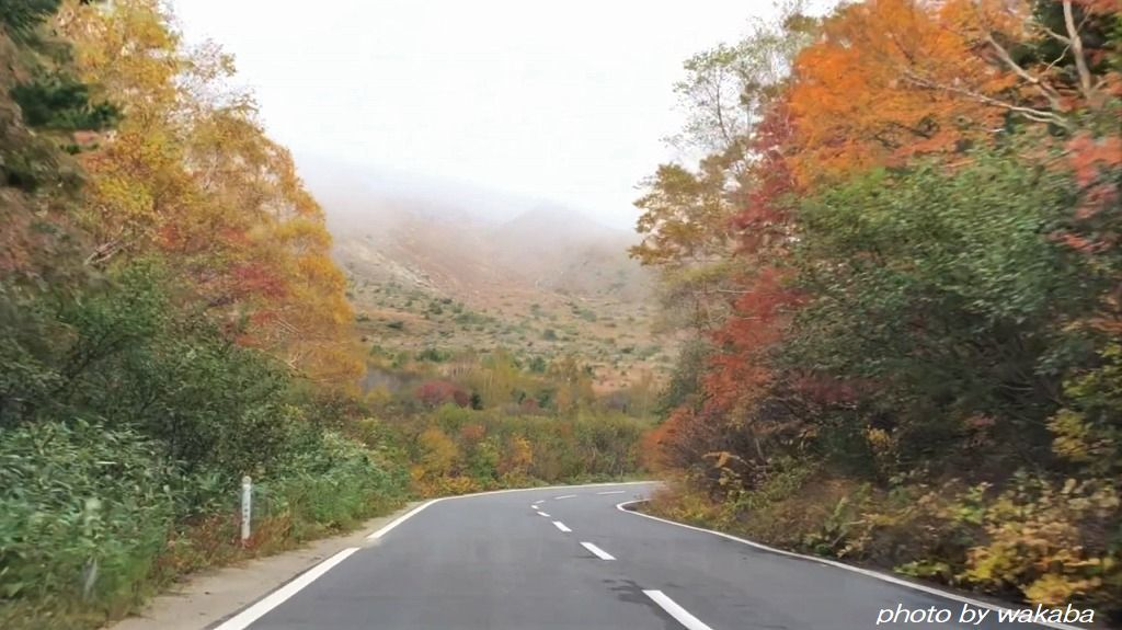 磐梯吾妻スカイラインの紅葉は浄土平付近がきれいでした(^^♪_e0052135_16175586.jpg