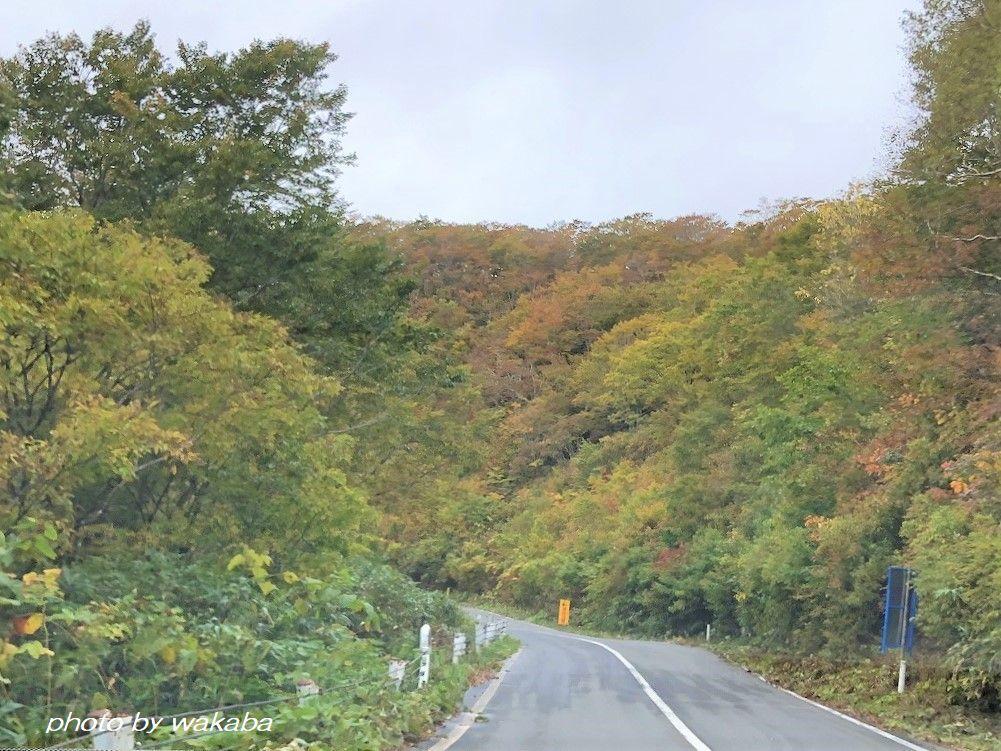 磐梯吾妻スカイラインの紅葉は浄土平付近がきれいでした(^^♪_e0052135_16180005.jpg