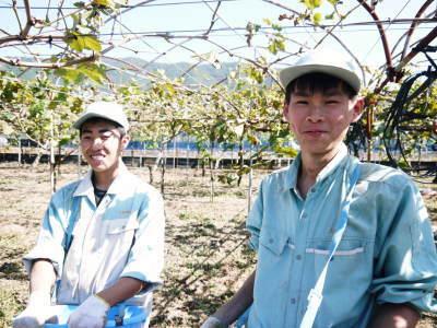 熊本ぶどう 社方園 収穫を終えたぶどう園にお礼肥えです!鹿本農業高校から来た実習生と共に(2019)前編_a0254656_17542094.jpg