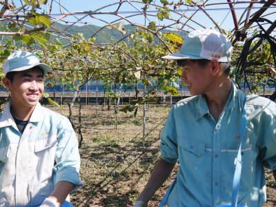 熊本ぶどう 社方園 収穫を終えたぶどう園にお礼肥えです!鹿本農業高校から来た実習生と共に(2019)前編_a0254656_17592439.jpg