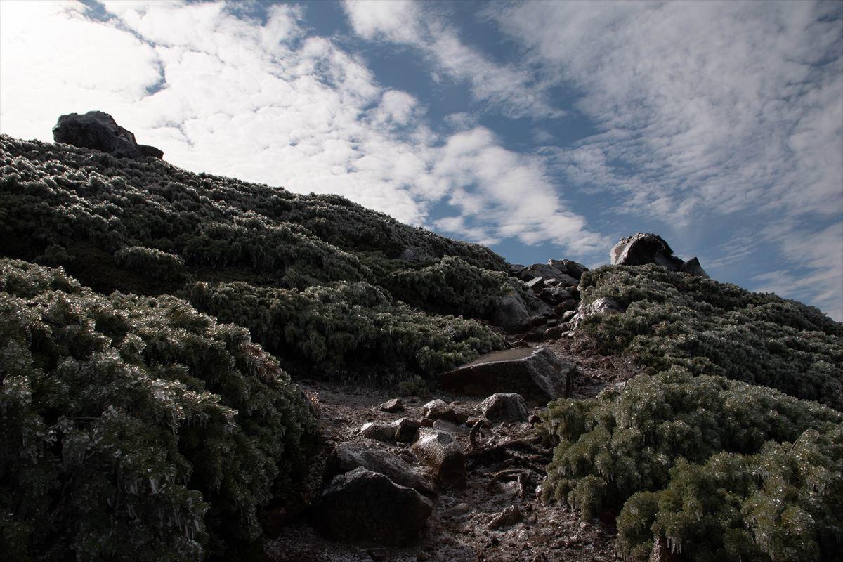 久しぶりに雌阿寒岳の山頂へ!_b0281366_19540160.jpg