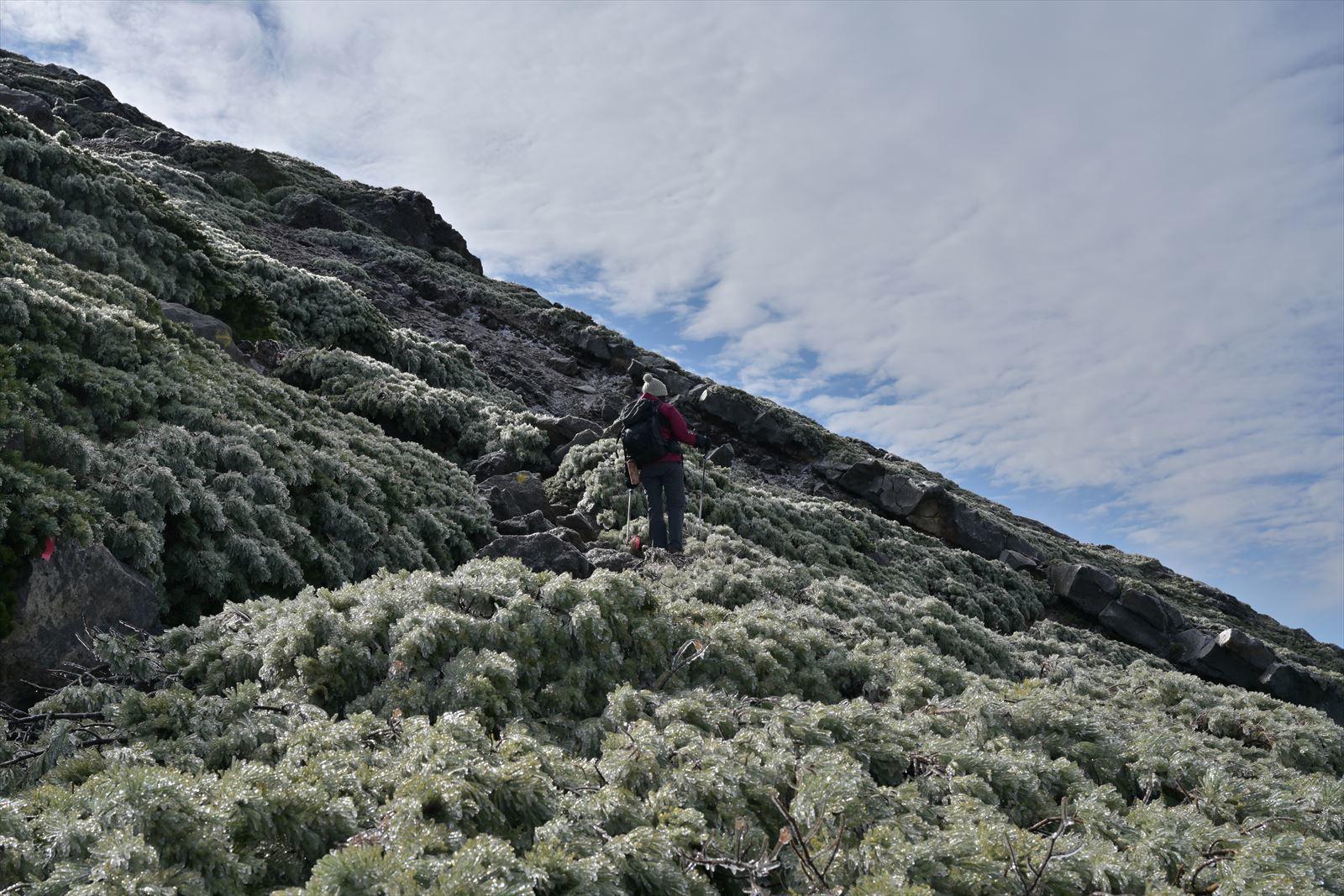 久しぶりに雌阿寒岳の山頂へ!_b0281366_19544242.jpg