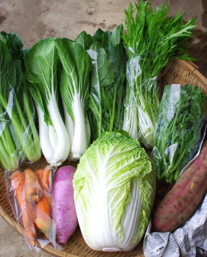 今週の野菜セット(10/17~10/19着)_c0110869_11175495.jpg