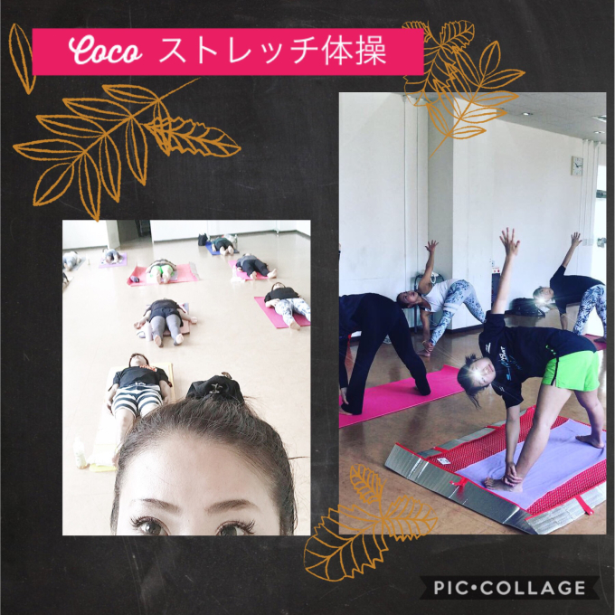 Coco ストレッチ きもちい〜✨_a0134270_19202749.jpg