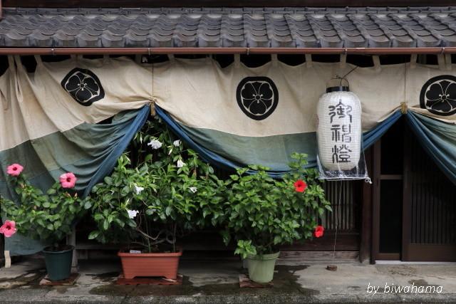 大津祭~2019_b0055171_14444552.jpg