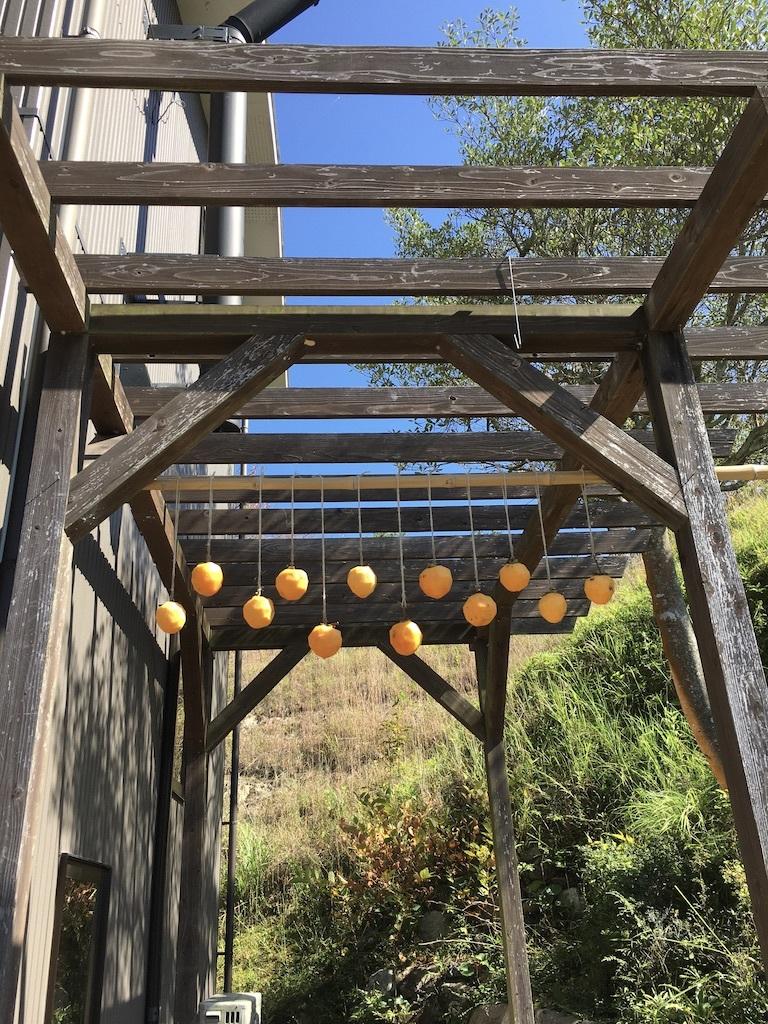 心地よい秋の日に 〜ジャンボ干し柿を作りながら〜_c0334574_19343978.jpg