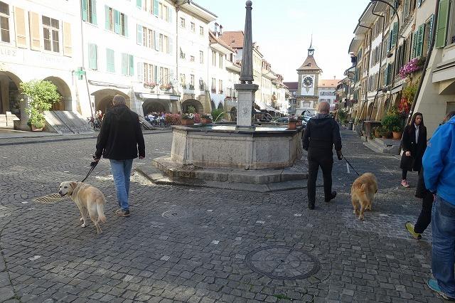 スイスでの週末(2)~ スイスの宝石・ムルテン_c0211876_05125370.jpg