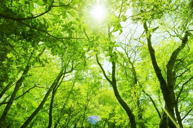 No.4420 10月16日(水):FBL大学は「環境」です_b0113993_09160347.jpg