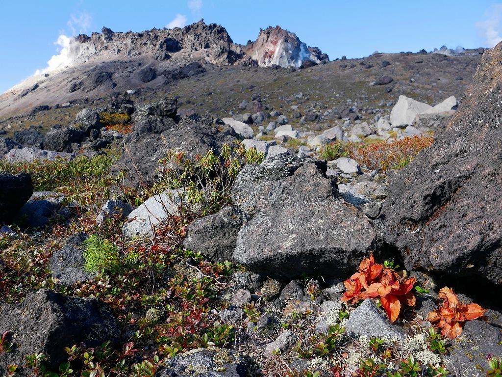 紅葉がそろそろ見頃?の樽前山、2019.10.15_f0138096_10204586.jpg