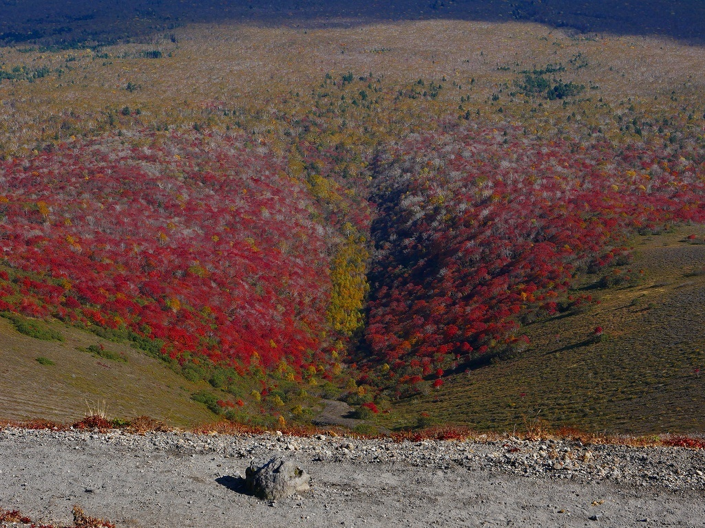 紅葉がそろそろ見頃?の樽前山、2019.10.15_f0138096_10284981.jpg