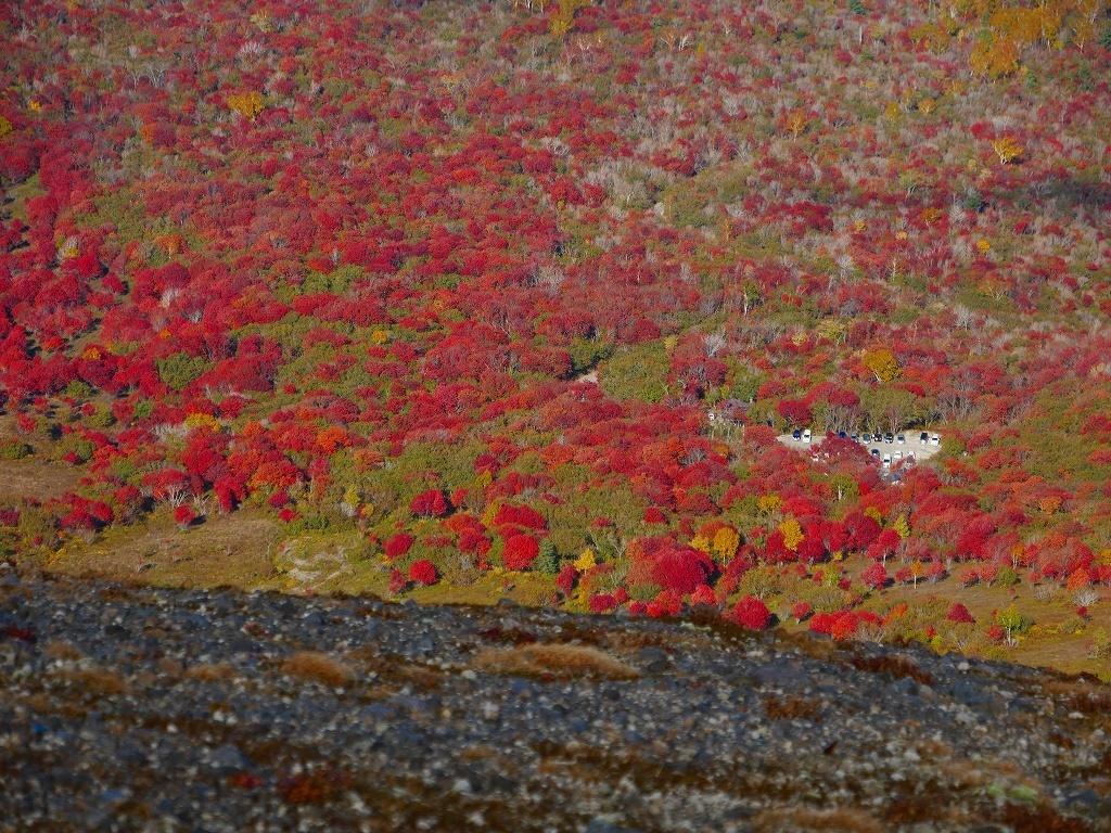 紅葉がそろそろ見頃?の樽前山、2019.10.15_f0138096_10295659.jpg