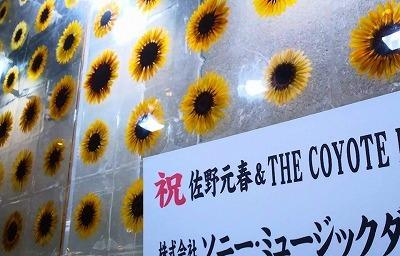 佐野元春 & THE COYOTE BAND@赤坂ブリッツ_a0000912_10563574.jpg