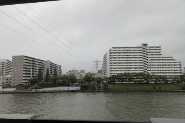 台風19号(岩淵水門、ありがとう)_e0101819_12443609.jpg