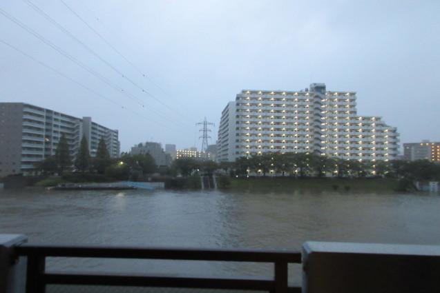 台風19号(岩淵水門、ありがとう)_e0101819_12450927.jpg
