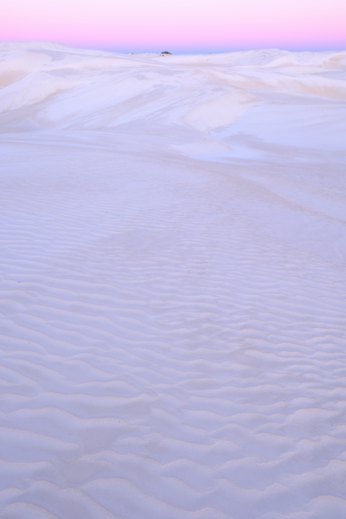 White Dune Dusk  FUJIFILM X Series Facebookより転載_f0050534_23535666.jpg