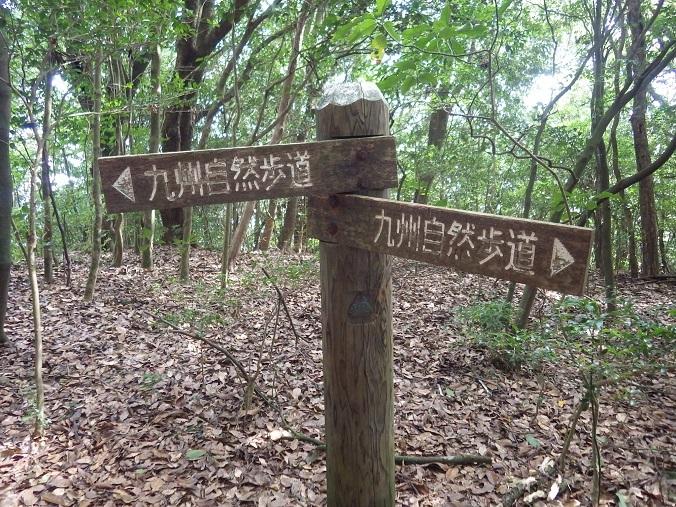国見山・・九州自然歩道、栗ノ木峠_e0164643_14345799.jpg