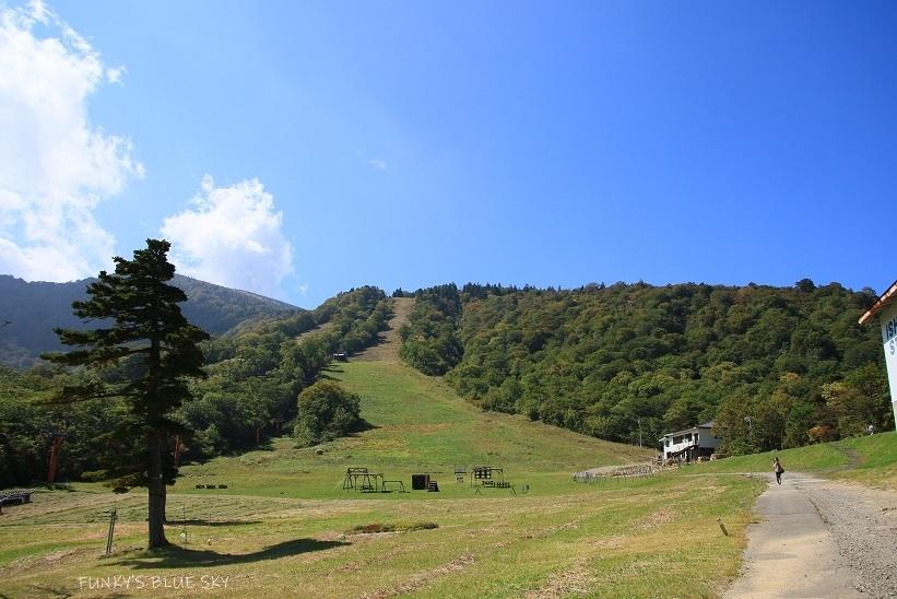 山で遊んで 新蕎麦食べて きのこ汁♪_c0145250_10484120.jpg