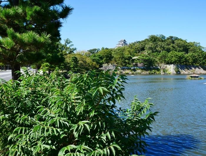 和歌山城へ 30mm(35mm換算)単焦点レンズ試写 2  2019-10-22 00:00     _b0093754_21110185.jpg