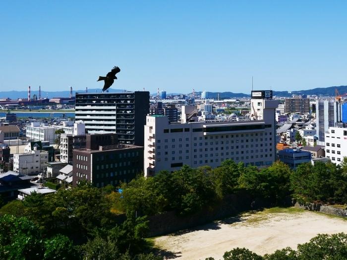 和歌山城へ 30mm(35mm換算)単焦点レンズ試写 2  2019-10-22 00:00     _b0093754_21133947.jpg