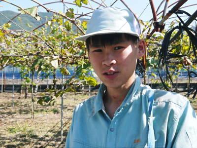 熊本ぶどう 社方園 収穫を終えたぶどう園にお礼肥えです!鹿本農業高校から来た実習生と共に(2019)後編_a0254656_18202622.jpg
