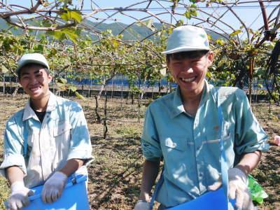 熊本ぶどう 社方園 収穫を終えたぶどう園にお礼肥えです!鹿本農業高校から来た実習生と共に(2019)後編_a0254656_18221702.jpg