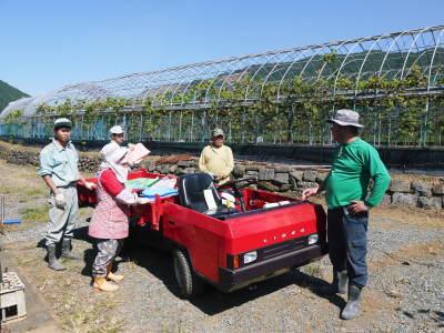 熊本ぶどう 社方園 収穫を終えたぶどう園にお礼肥えです!鹿本農業高校から来た実習生と共に(2019)後編_a0254656_18274081.jpg