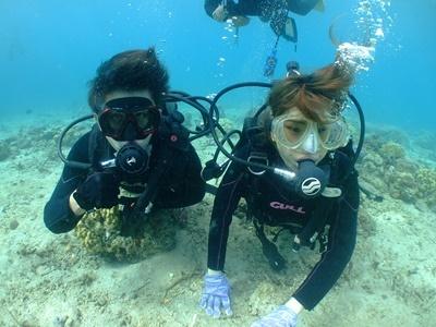「体験ダイビング&イルカ!」_b0033573_19225622.jpg