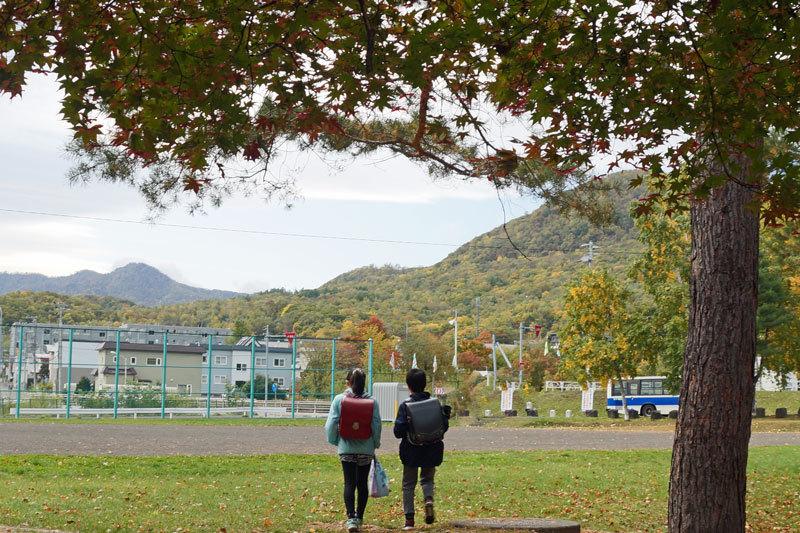 公園のモミジ  2_d0162994_08181074.jpg