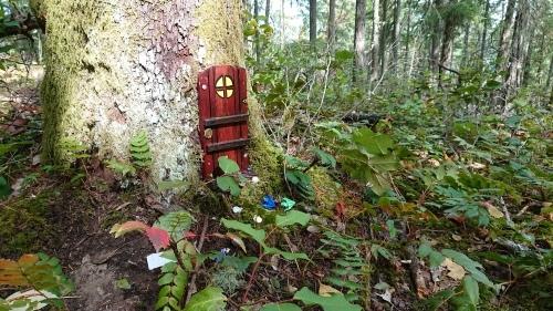 ソルトスプリング島 ⑧ アースキン山(妖精の扉)_b0117700_05191952.jpg