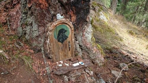 ソルトスプリング島 ⑧ アースキン山(妖精の扉)_b0117700_05194677.jpg