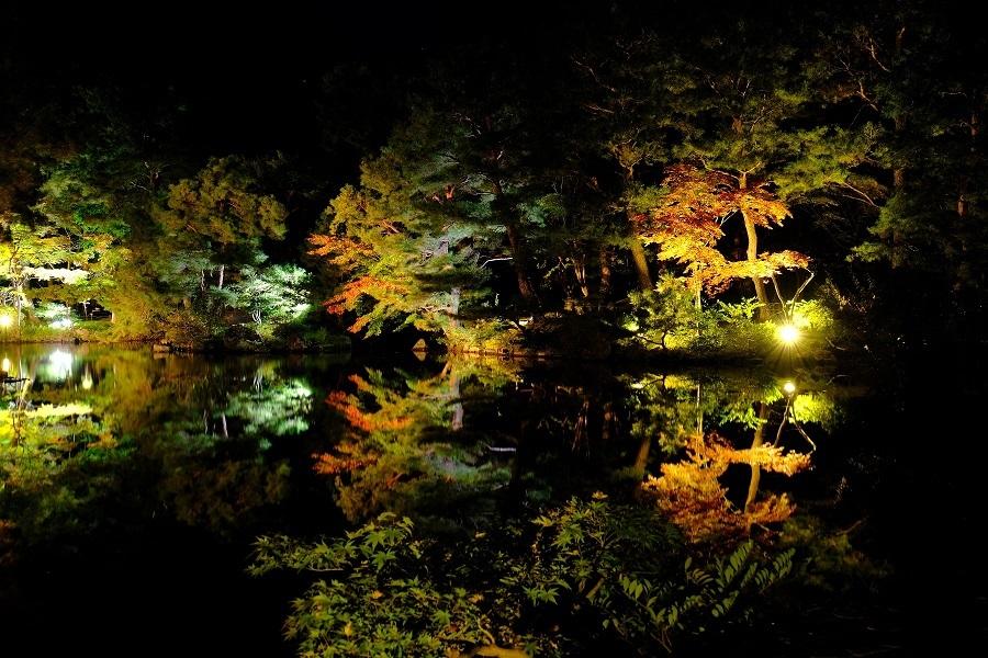 清水園 庭園ライトアップの御案内_e0135219_11540902.jpg