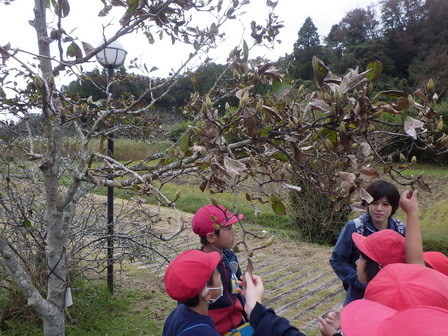 小学生、秋の環境学習_a0123836_16000959.jpg