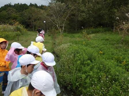 小学生、秋の環境学習_a0123836_16002107.jpg