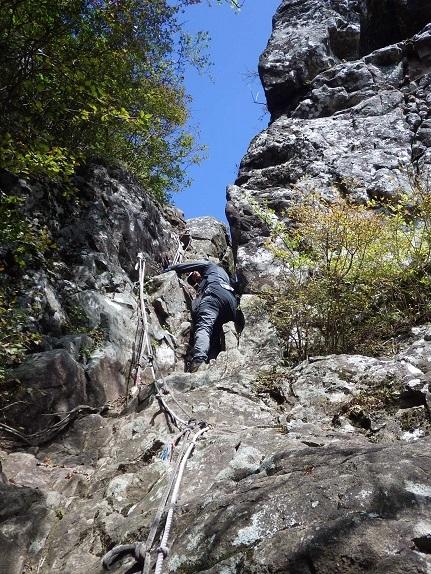 鷹ノ巣山へ・・ツメレンゲ_e0164643_13251888.jpg