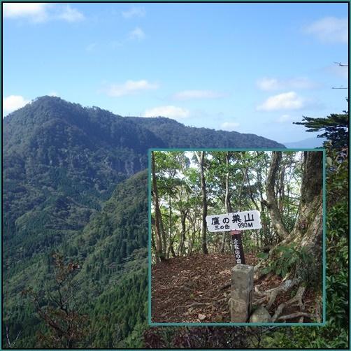 鷹ノ巣山へ・・ツメレンゲ_e0164643_13252232.jpg