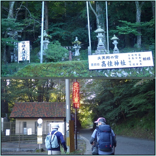 鷹ノ巣山へ・・ツメレンゲ_e0164643_13254960.jpg