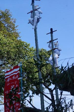 若宮稲荷神社の竹ん芸_d0013645_20114151.jpg