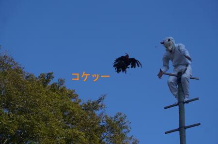 若宮稲荷神社の竹ん芸_d0013645_20151667.jpg