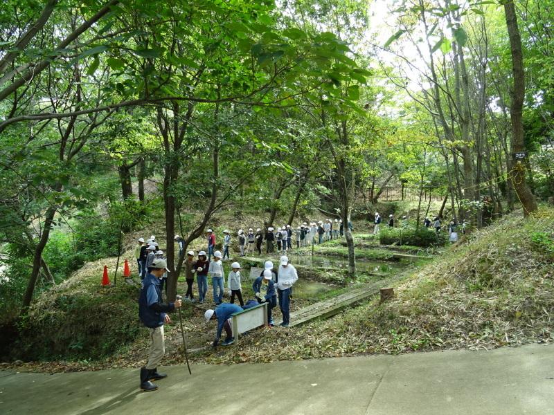岸和田市立東光小学校4年生遠足サポート・・・うみべの森_c0108460_17405542.jpg