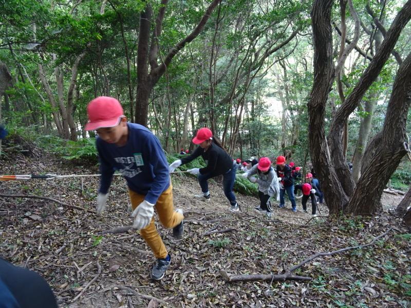 岸和田市立東光小学校4年生遠足サポート・・・うみべの森_c0108460_17441668.jpg