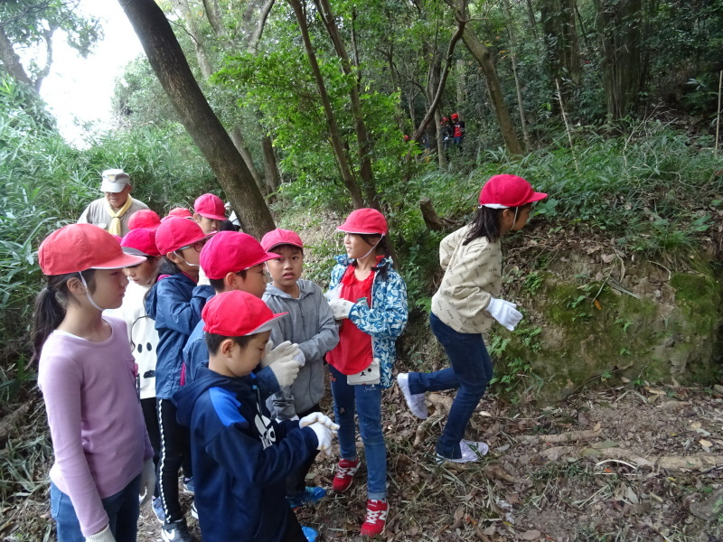 岸和田市立東光小学校4年生遠足サポート・・・うみべの森_c0108460_17441780.jpg