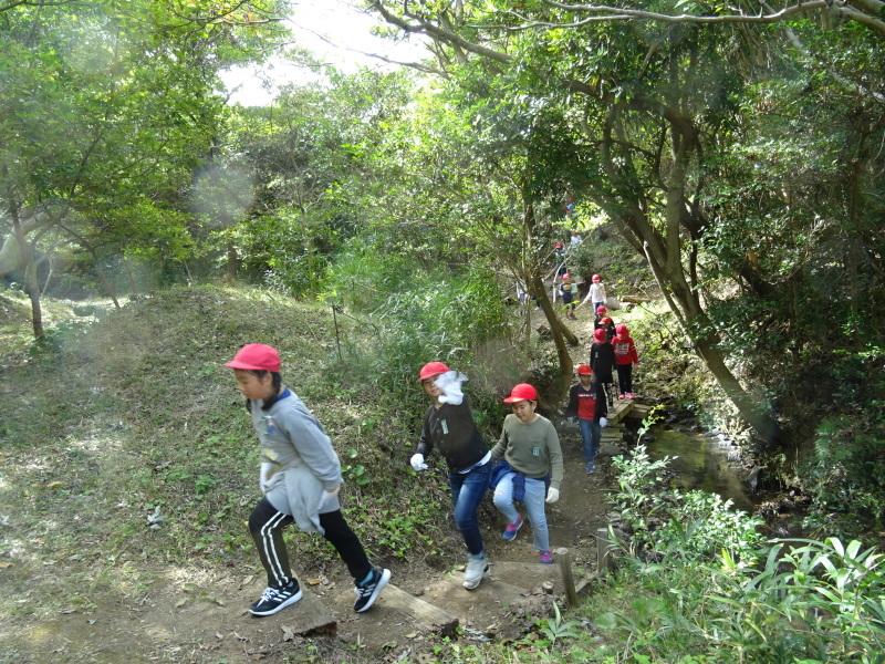 岸和田市立東光小学校4年生遠足サポート・・・うみべの森_c0108460_17461726.jpg