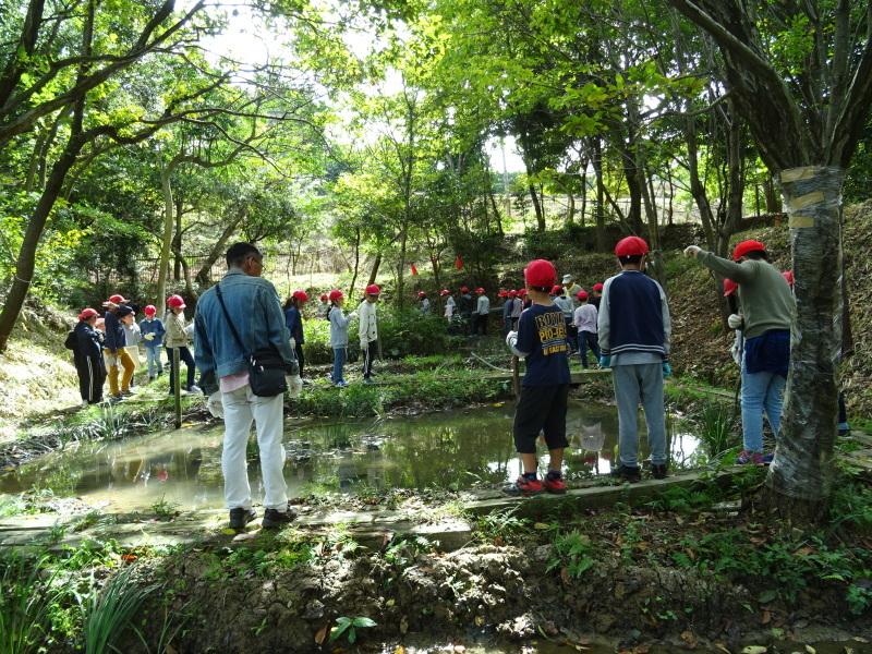 岸和田市立東光小学校4年生遠足サポート・・・うみべの森_c0108460_17461892.jpg